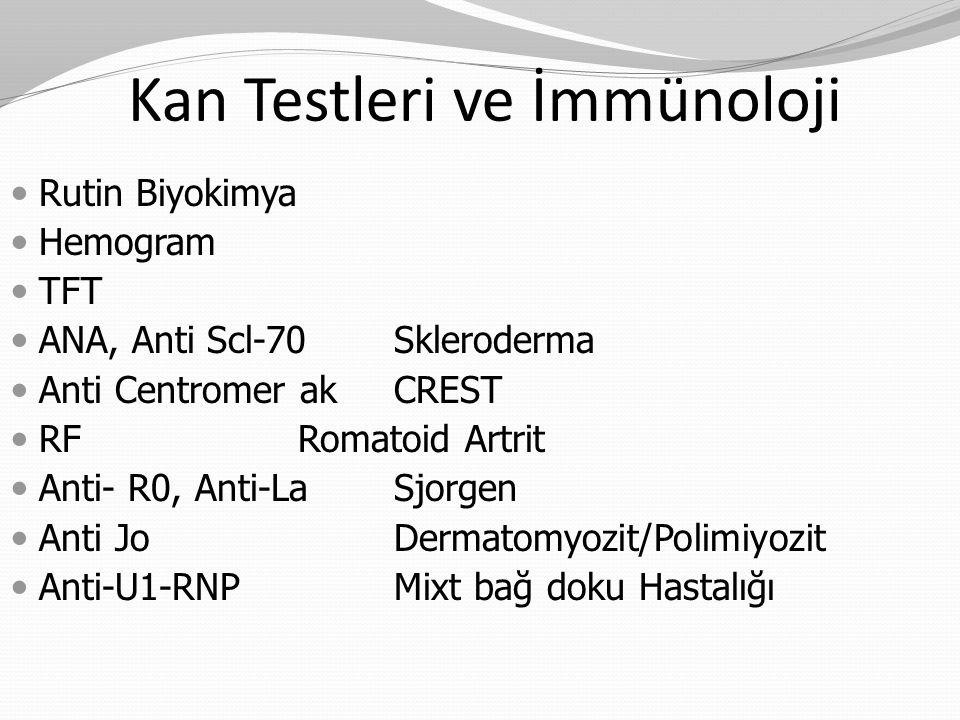 Rutin Biyokimya Hemogram TFT ANA, Anti Scl-70 Skleroderma Anti Centromer ak CREST RF Romatoid Artrit Anti- R0, Anti-La Sjorgen Anti Jo Dermatomyozit/P