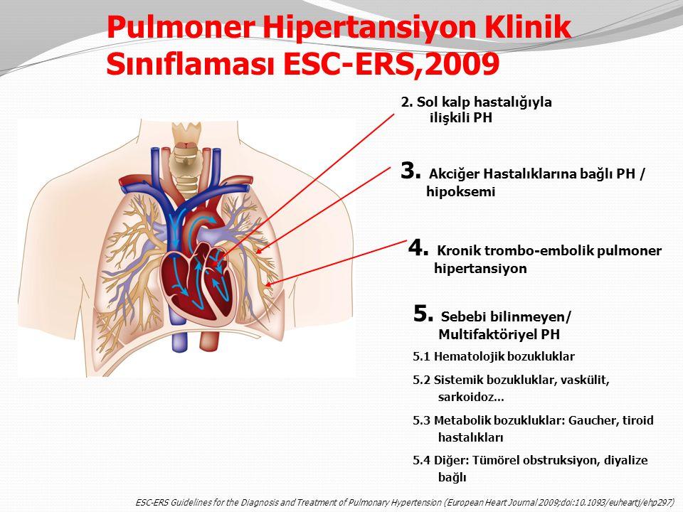 5. Sebebi bilinmeyen/ Multifaktöriyel PH 5.1 Hematolojik bozukluklar 5.2 Sistemik bozukluklar, vaskülit, sarkoidoz... 5.3 Metabolik bozukluklar: Gauch