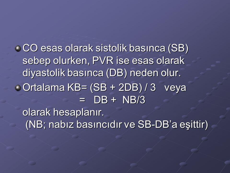 CO esas olarak sistolik basınca (SB) sebep olurken, PVR ise esas olarak diyastolik basınca (DB) neden olur. Ortalama KB= (SB + 2DB) / 3 veya = DB + NB