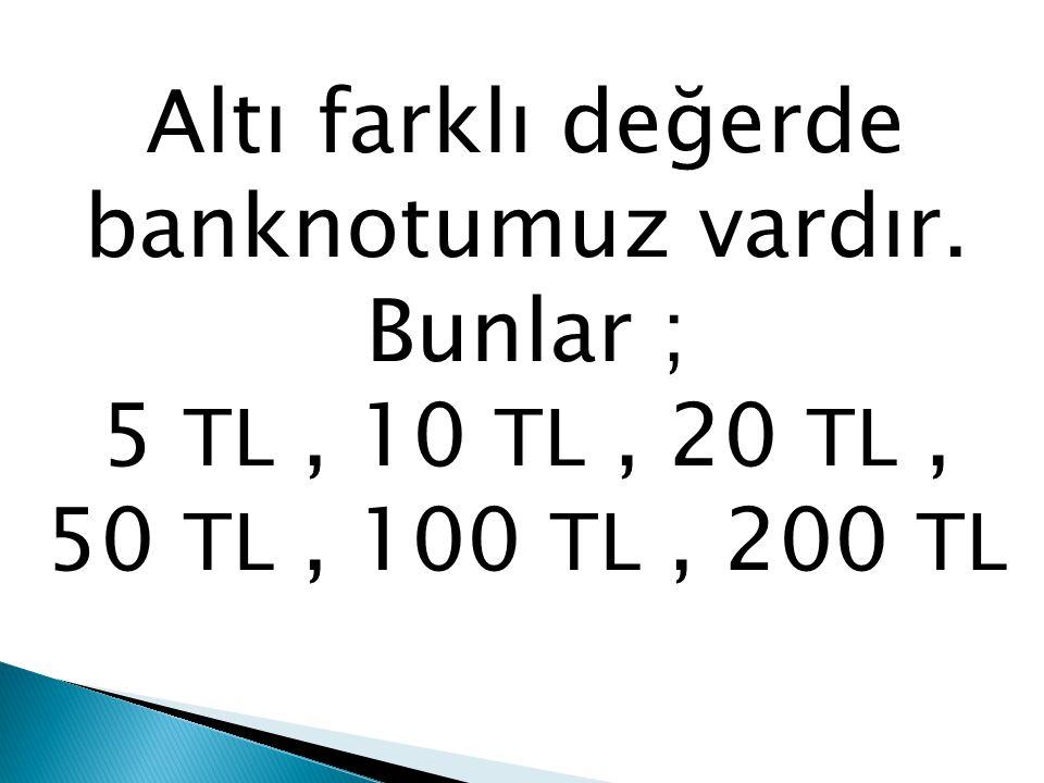 Altı farklı değerde banknotumuz vardır. Bunlar ; 5 TL, 10 TL, 20 TL, 50 TL, 100 TL, 200 TL