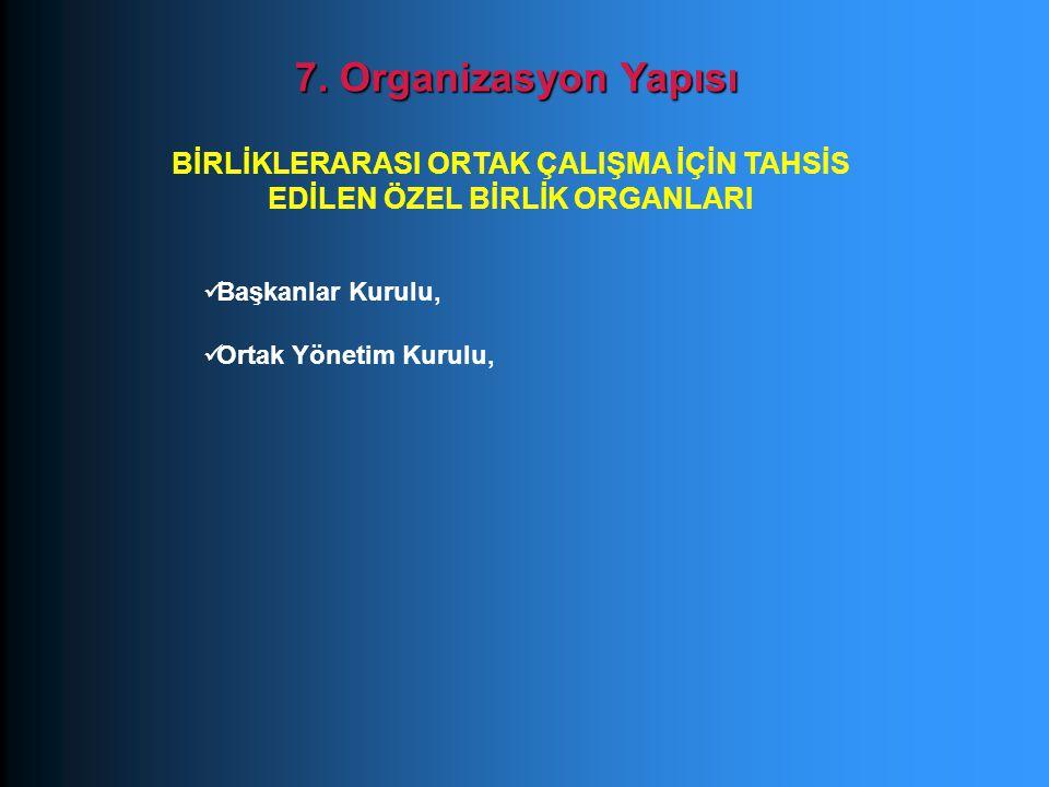 Başkanlar Kurulu, Ortak Yönetim Kurulu, 7. Organizasyon Yapısı BİRLİKLERARASI ORTAK ÇALIŞMA İÇİN TAHSİS EDİLEN ÖZEL BİRLİK ORGANLARI