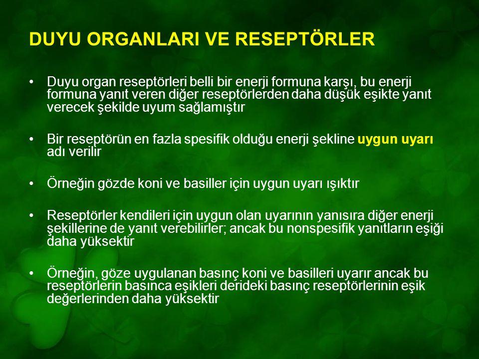 DUYU ORGANLARI VE RESEPTÖRLER Duyu organ reseptörleri belli bir enerji formuna karşı, bu enerji formuna yanıt veren diğer reseptörlerden daha düşük eş