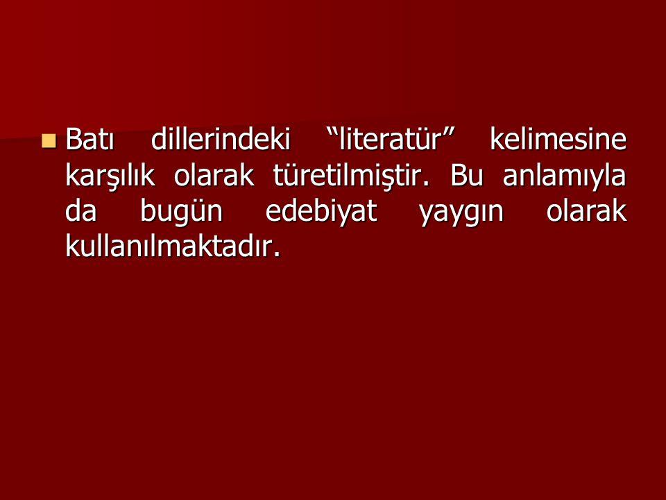 """Batı dillerindeki """"literatür"""" kelimesine karşılık olarak türetilmiştir. Bu anlamıyla da bugün edebiyat yaygın olarak kullanılmaktadır. Batı dillerinde"""