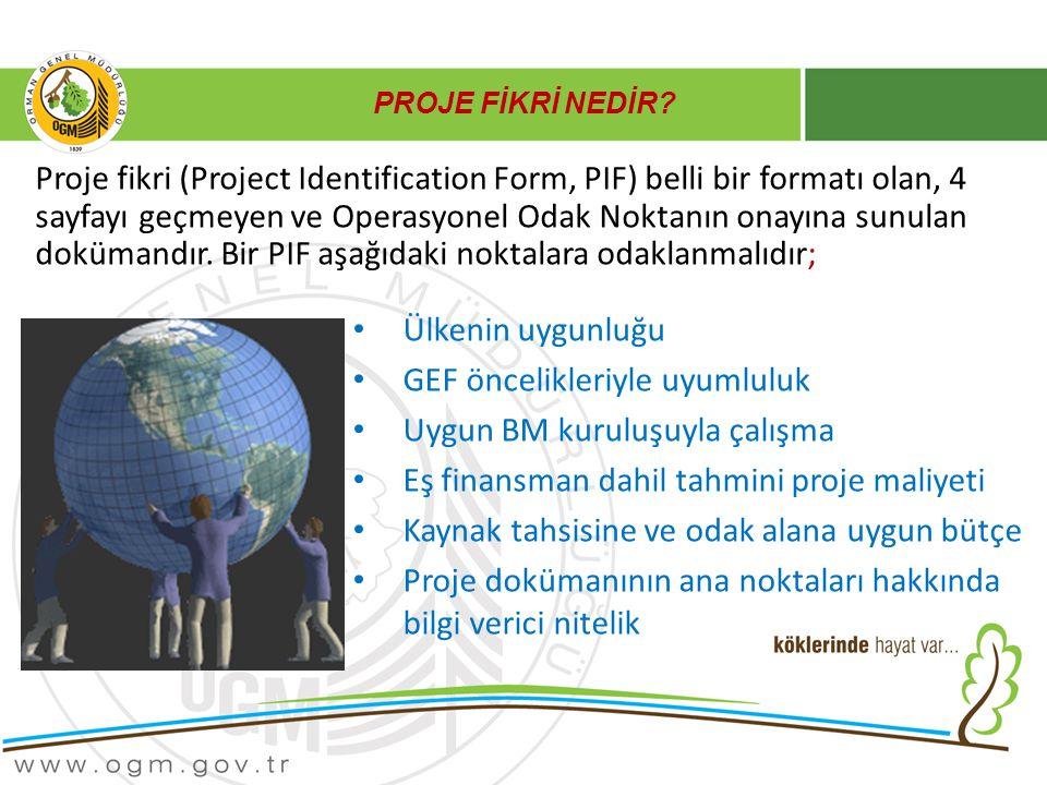 PROJE FİKRİ NEDİR? Ülkenin uygunluğu GEF öncelikleriyle uyumluluk Uygun BM kuruluşuyla çalışma Eş finansman dahil tahmini proje maliyeti Kaynak tahsis