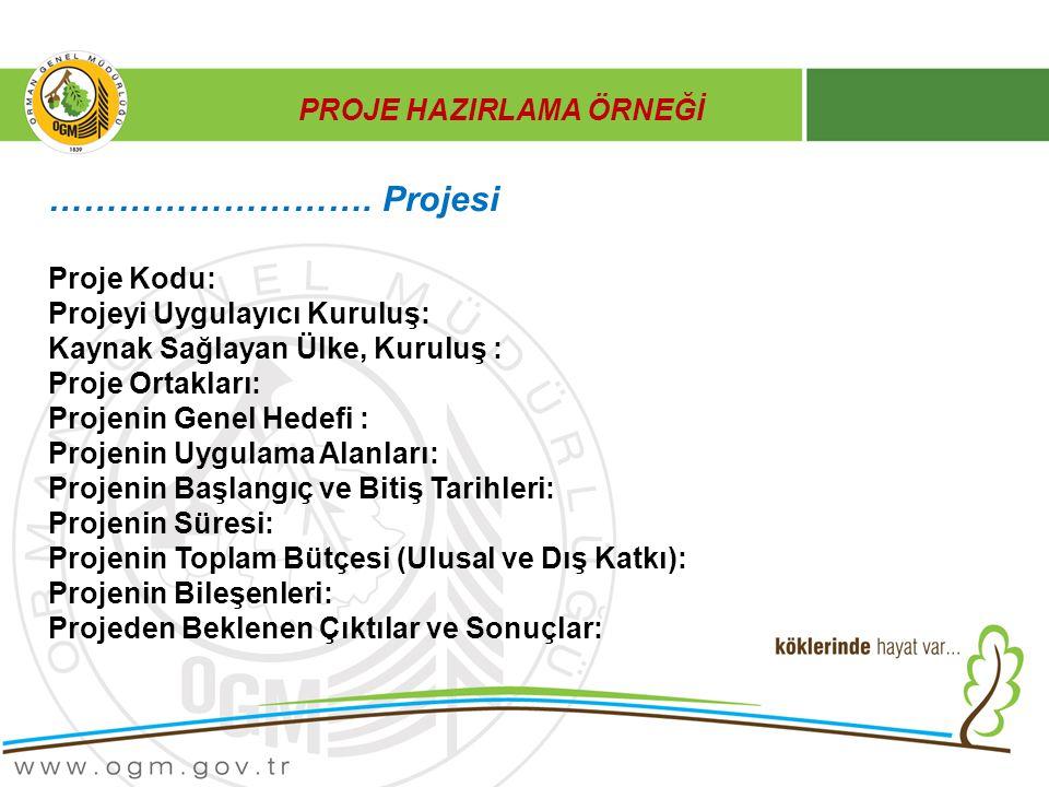 PROJE HAZIRLAMA ÖRNEĞİ ………………………. Projesi Proje Kodu: Projeyi Uygulayıcı Kuruluş: Kaynak Sağlayan Ülke, Kuruluş : Proje Ortakları: Projenin Genel Hede