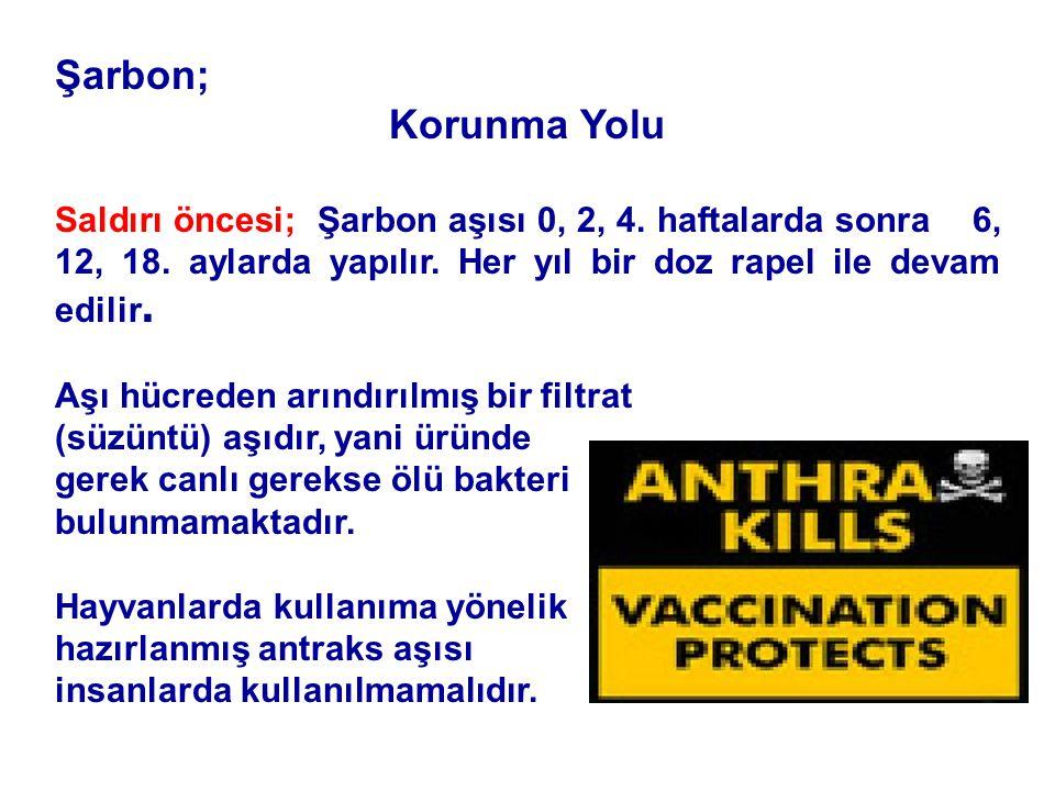 Şarbon; Korunma Yolu Saldırı öncesi; Şarbon aşısı 0, 2, 4.