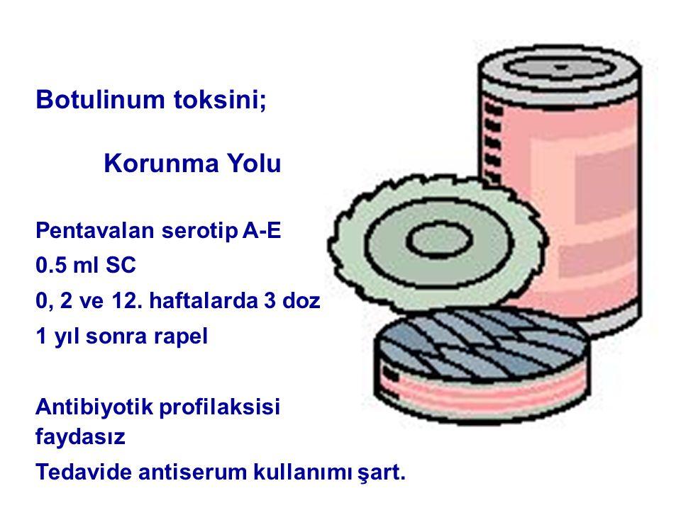 Botulinum toksini; Korunma Yolu Pentavalan serotip A-E 0.5 ml SC 0, 2 ve 12.