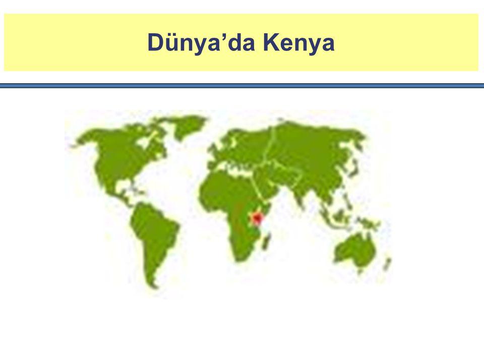 Ekonominin Temel Yapısı Serbest piyasa ekonomisi, liberal dış ticaret ve kambiyo rejimi Yabancı yatırıma pozitif yaklaşım - KenyaYatırım Otoritesi - İhracat İşleme Bölgeleri - AGOA, GTS Doğu Afrika'nın finans, lojistik ve iletişim merkezi Coca Cola, Glaxosmithkline, Nestle, Unilever...