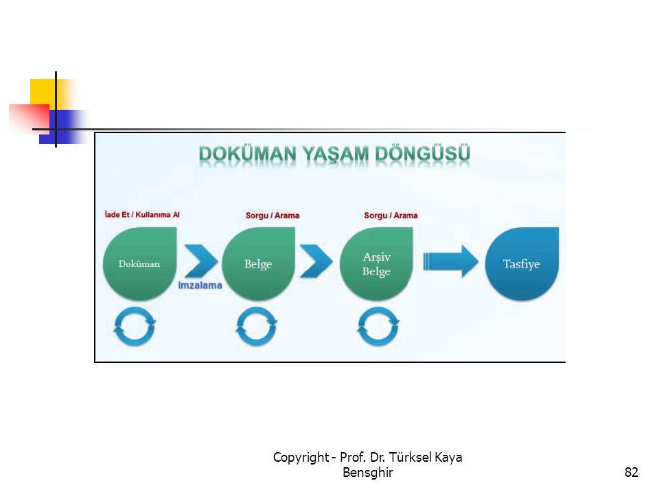 Copyright - Prof. Dr. Türksel Kaya Bensghir82