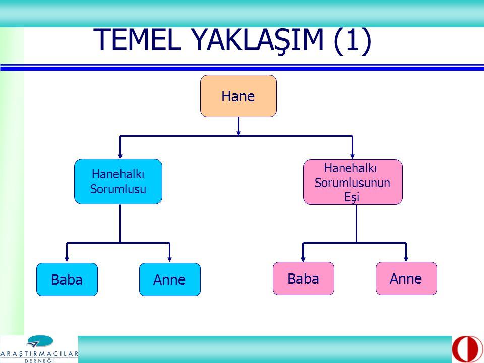 Baba Hanehalkı Sorumlusunun Eşi Hanehalkı Sorumlusu Hane Anne Baba TEMEL YAKLAŞIM (1)