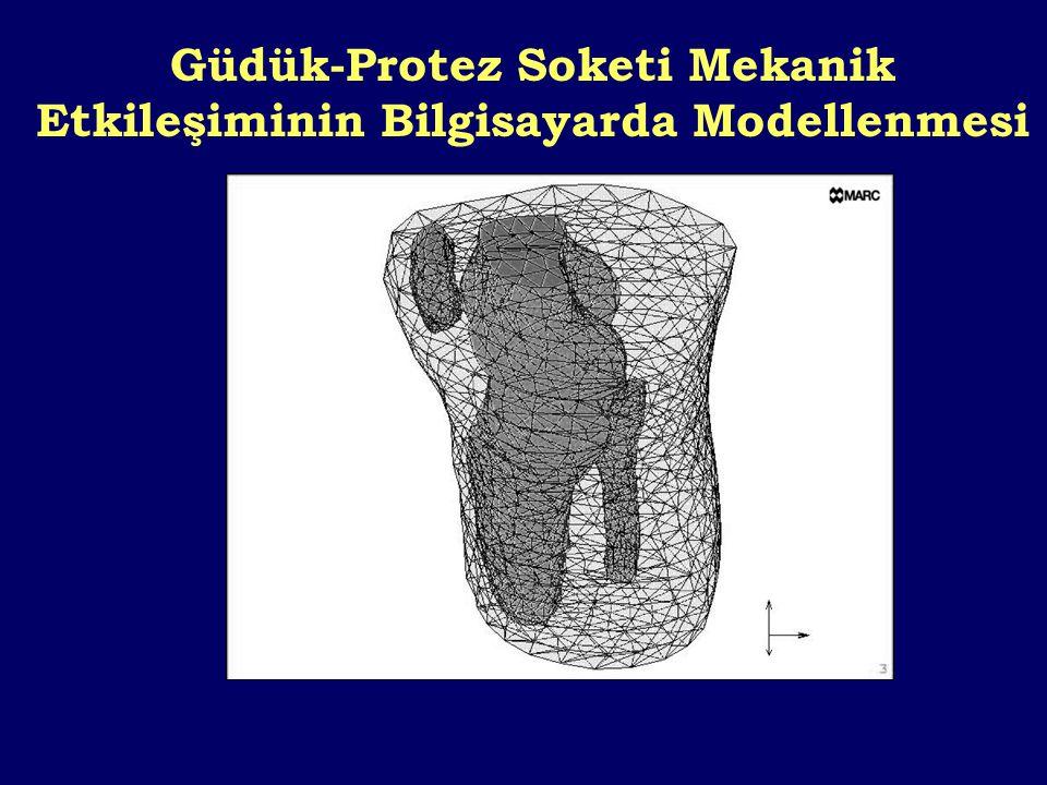 Güdük-Protez Soketi Mekanik Etkileşiminin Bilgisayarda Modellenmesi