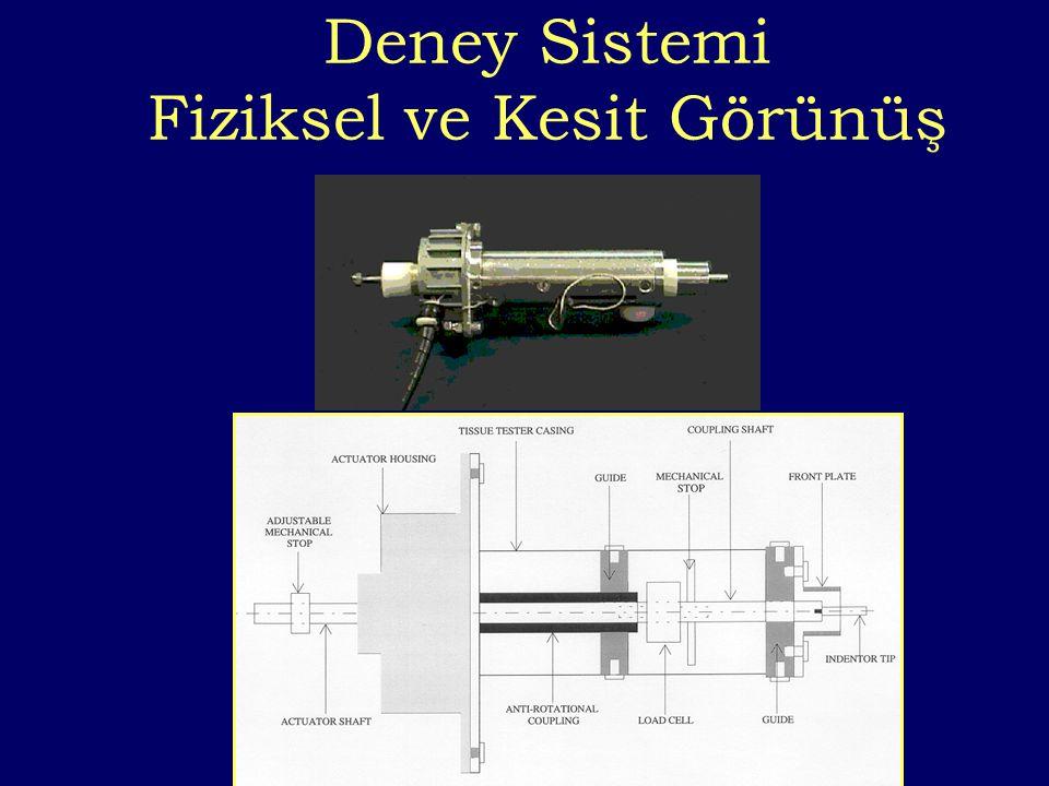 Deney Sistemi Fiziksel ve Kesit Görünüş