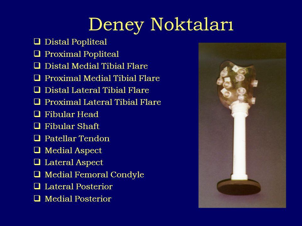 Deney Noktaları  Distal Popliteal  Proximal Popliteal  Distal Medial Tibial Flare  Proximal Medial Tibial Flare  Distal Lateral Tibial Flare  Pr