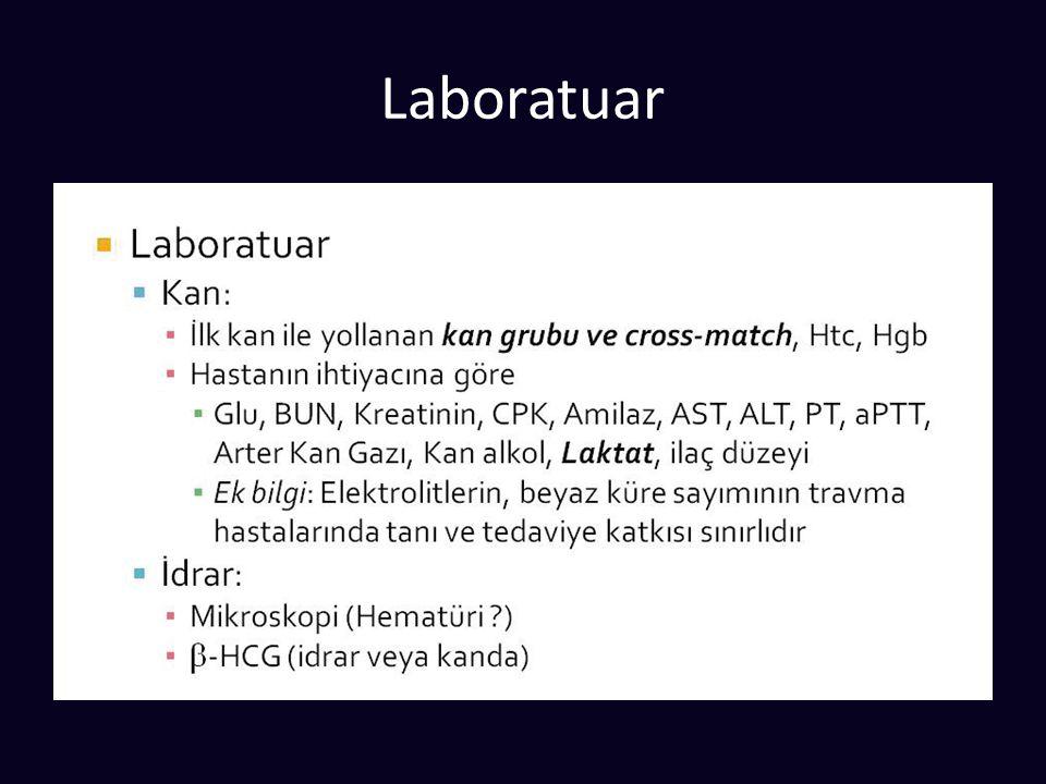 Laboratuar