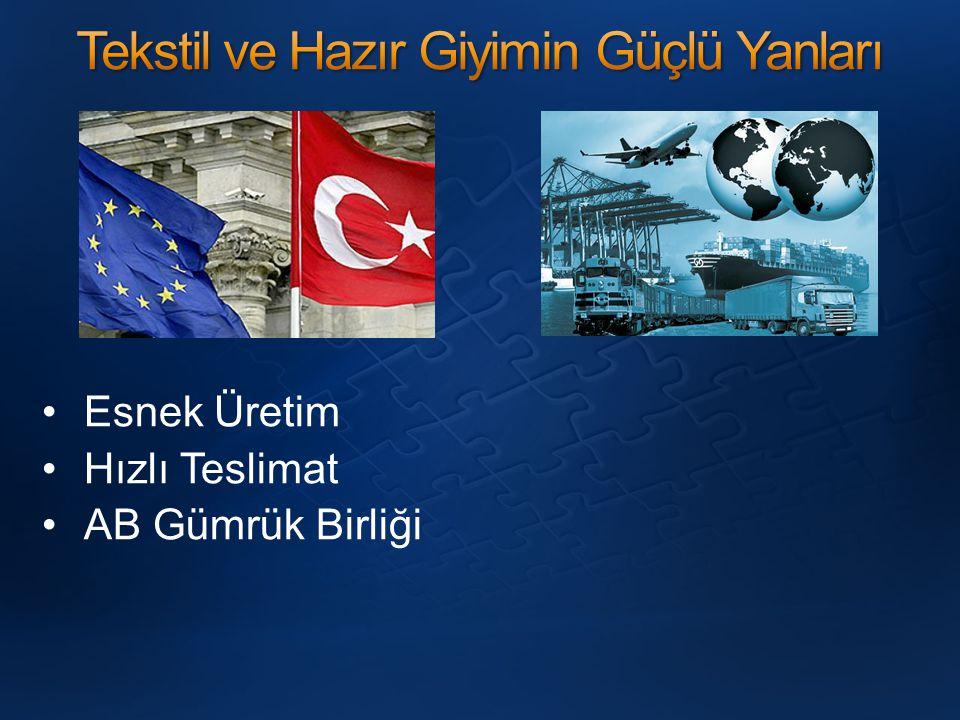 Sektörün envanterinin ve yol haritasının çıkarılmamış olması Değerli Türk Lirası / Düşük Kur Politikası'nın olumsuz etkileri İşçiliklerin üzerindeki kamu yükleri Kayıtdışılık