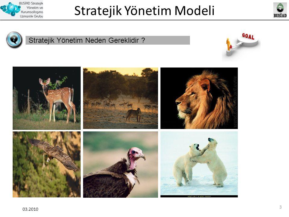 Stratejik Yönetim Modeli 03.2010 14 Stratejik Yönetim Farkındalık Araştırması 1.