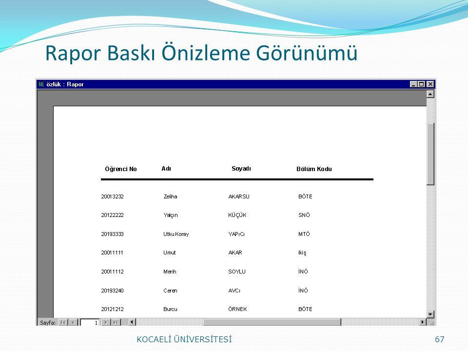 Rapor Baskı Önizleme Görünümü KOCAELİ ÜNİVERSİTESİ67