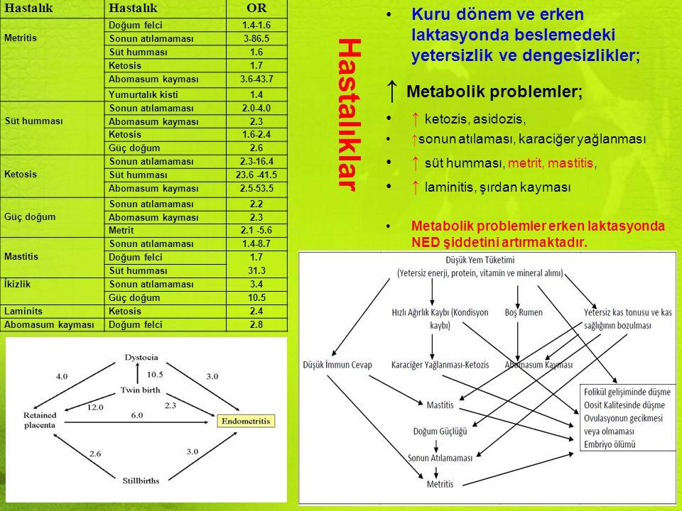 Hastalıklar Kuru dönem ve erken laktasyonda beslemedeki yetersizlik ve dengesizlikler; ↑ Metabolik problemler; ↑ ketozis, asidozis, ↑sonun atılaması,
