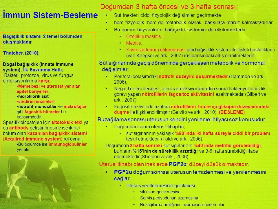 İmmun Sistem-Besleme Bağışıklık sistemi 2 temel bölümden oluşmaktadır. Thatcher, (2010); Doğal bağışıklık (innate immune system); İlk Savunma Hattı; B