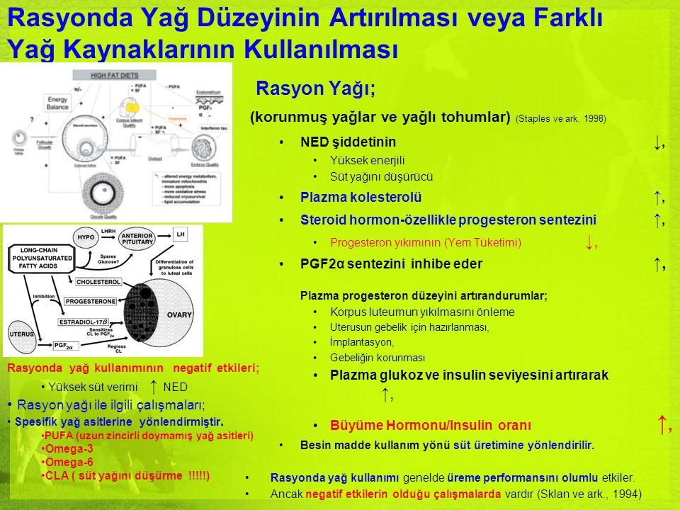 Rasyonda Yağ Düzeyinin Artırılması veya Farklı Yağ Kaynaklarının Kullanılması Rasyon Yağı; (korunmuş yağlar ve yağlı tohumlar) (Staples ve ark. 1998)