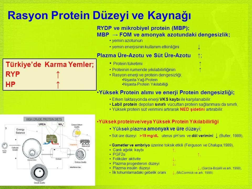 Rasyon Protein Düzeyi ve Kaynağı RYDP ve mikrobiyel protein (MBP); MBP → FOM ve amonyak azotundaki dengesizlik; yemin azotunun yemin enerjisinin kulla