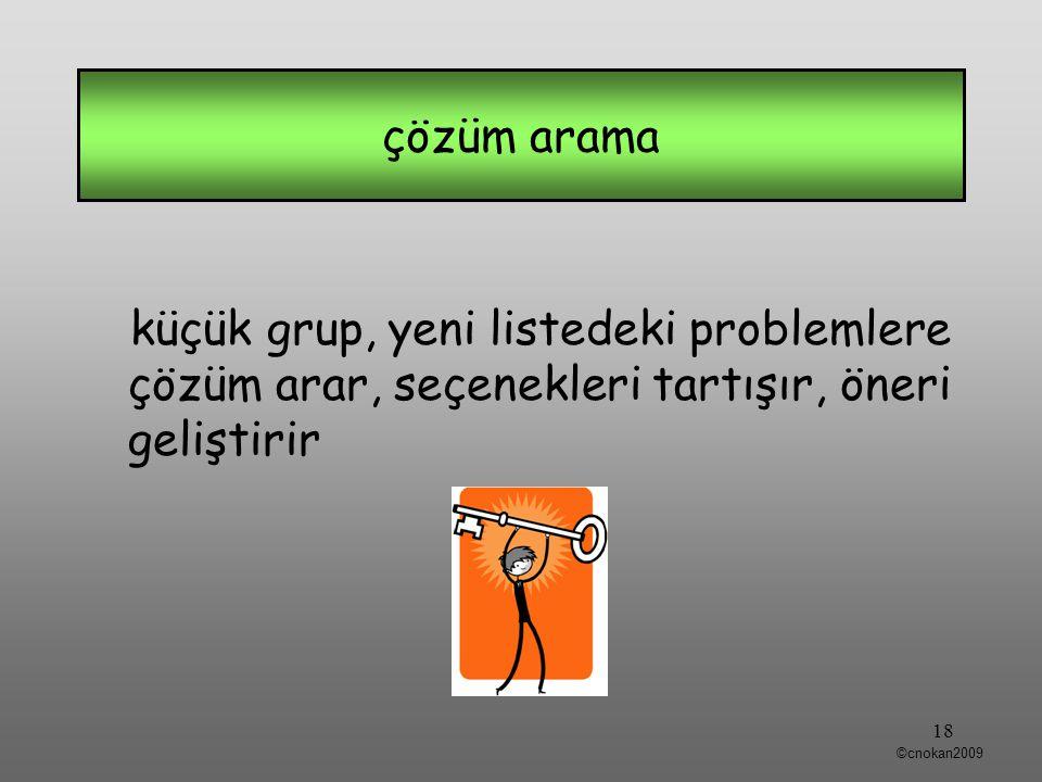 küçük grup, yeni listedeki problemlere çözüm arar, seçenekleri tartışır, öneri geliştirir çözüm arama 18 ©cnokan2009