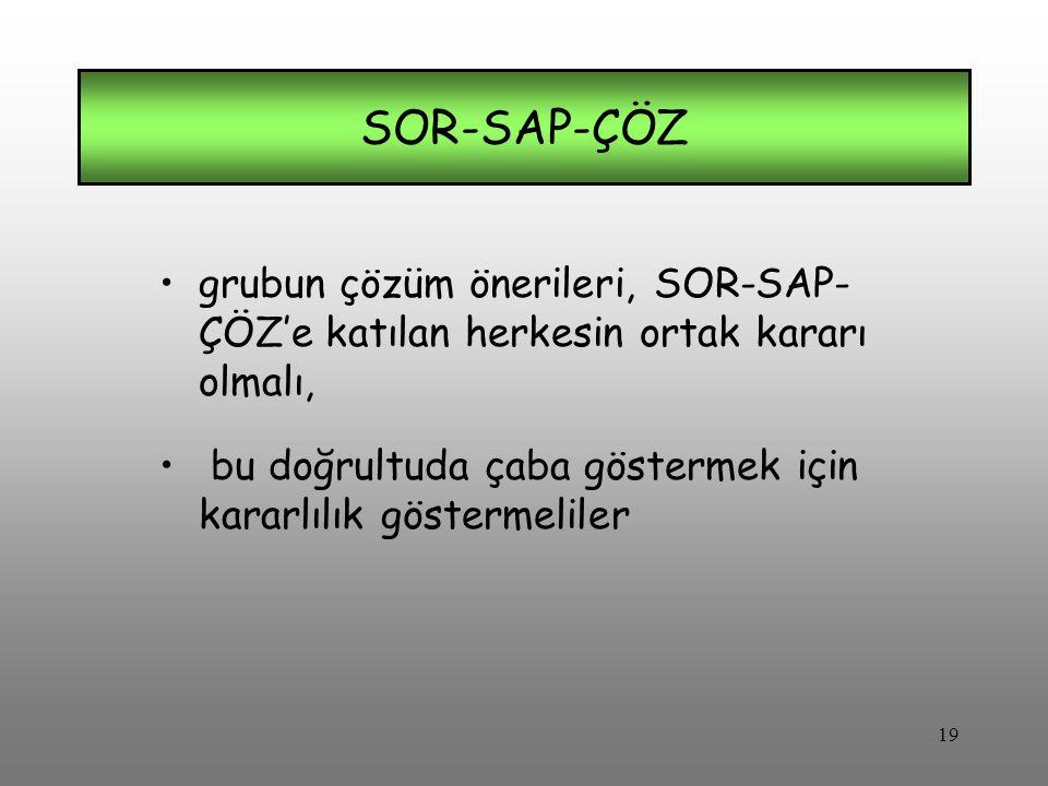 grubun çözüm önerileri, SOR-SAP- ÇÖZ'e katılan herkesin ortak kararı olmalı, bu doğrultuda çaba göstermek için kararlılık göstermeliler SOR-SAP-ÇÖZ 19