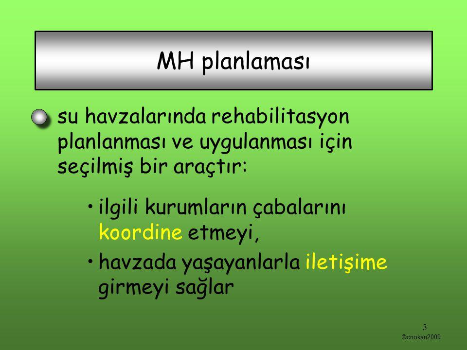 MH planlaması su havzalarında rehabilitasyon planlanması ve uygulanması için seçilmiş bir araçtır: ilgili kurumların çabalarını koordine etmeyi, havza