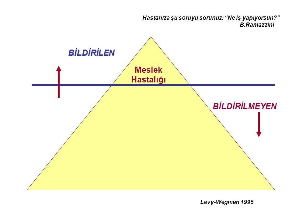 """Levy-Wegman 1995 BİLDİRİLEN BİLDİRİLMEYEN Meslek Hastalığı Hastanıza şu soruyu sorunuz: """"Ne iş yapıyorsun?"""" B.Ramazzini"""
