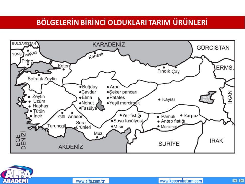 BÖLGELERİN BİRİNCİ OLDUKLARI TARIM ÜRÜNLERİ www.alfa.com.tr www.kpssrobotum.com