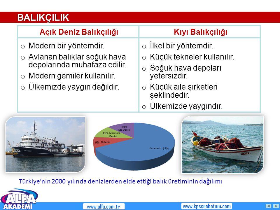 Açık Deniz Balıkçılığı Kıyı Balıkçılığı o Modern bir yöntemdir. o Avlanan balıklar soğuk hava depolarında muhafaza edilir. o Modern gemiler kullanılır