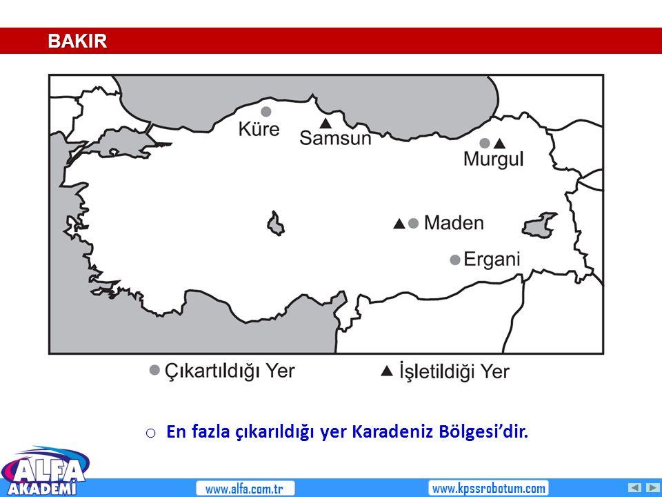BAKIR o En fazla çıkarıldığı yer Karadeniz Bölgesi'dir. www.alfa.com.tr www.kpssrobotum.com