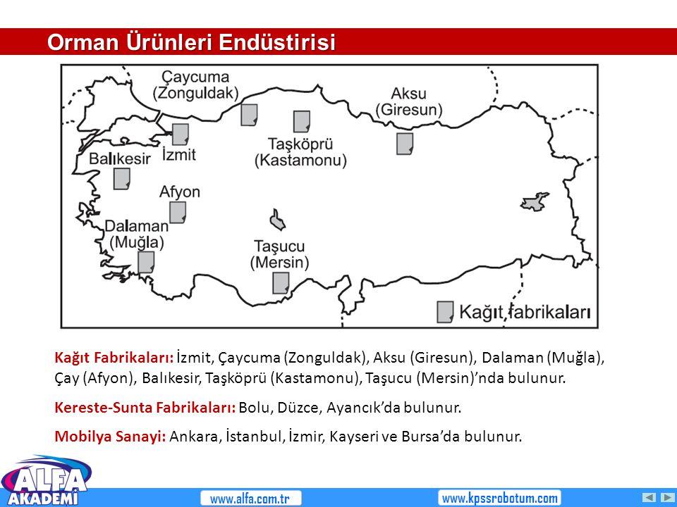 Kağıt Fabrikaları: İzmit, Çaycuma (Zonguldak), Aksu (Giresun), Dalaman (Muğla), Çay (Afyon), Balıkesir, Taşköprü (Kastamonu), Taşucu (Mersin)'nda bulu