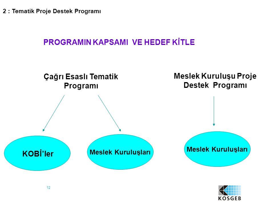 12 PROGRAMIN KAPSAMI VE HEDEF KİTLE Meslek Kuruluşu Proje Destek Programı Çağrı Esaslı Tematik Programı KOBİ'ler Meslek Kuruluşları 2 : Tematik Proje