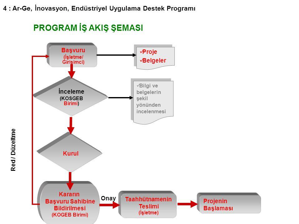 29 PROGRAM İŞ AKIŞ ŞEMASI Başvuru (İşletme/ Girişimci) İnceleme (KOSGEB Birimi) Kurul Kararın Başvuru Sahibine Bildirilmesi (KOGEB Birimi) Taahhütname