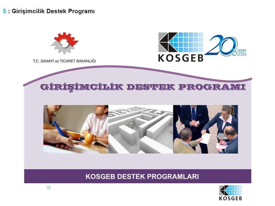 32 5 : Girişimcilik Destek Programı