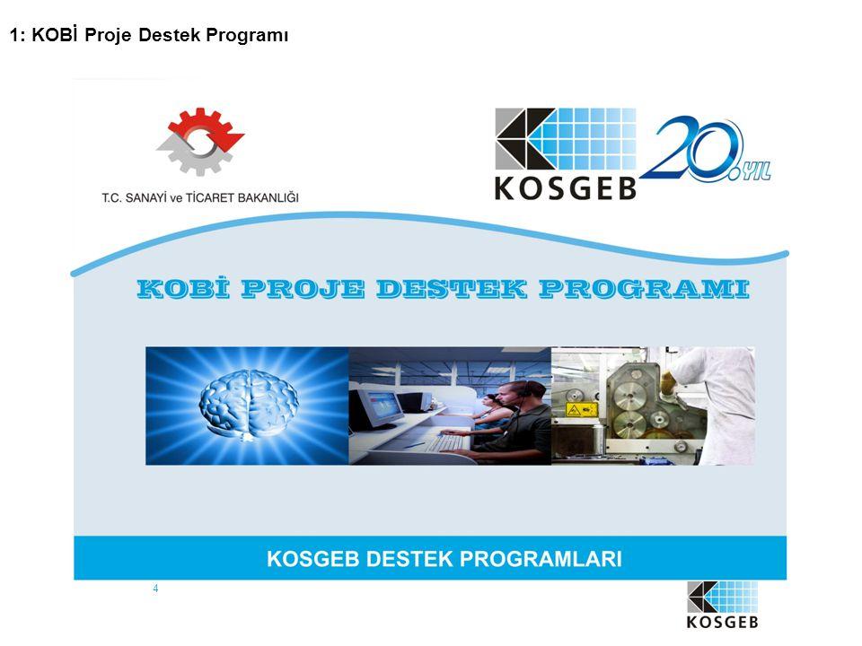 4 1: KOBİ Proje Destek Programı