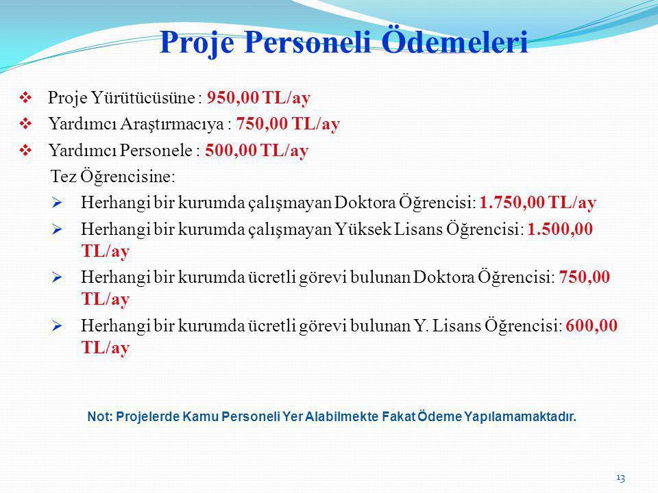 Proje Personeli Ödemeleri  Proje Yürütücüsüne : 950,00 TL/ay  Yardımcı Araştırmacıya : 750,00 TL/ay  Yardımcı Personele : 500,00 TL/ay Tez Öğrencis