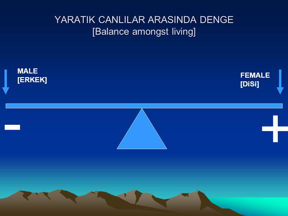 YARATIK CANLILAR ARASINDA DENGE [Balance amongst values] MATERIALISM [MADDIYET] MORALS [MANEVIYET] - +