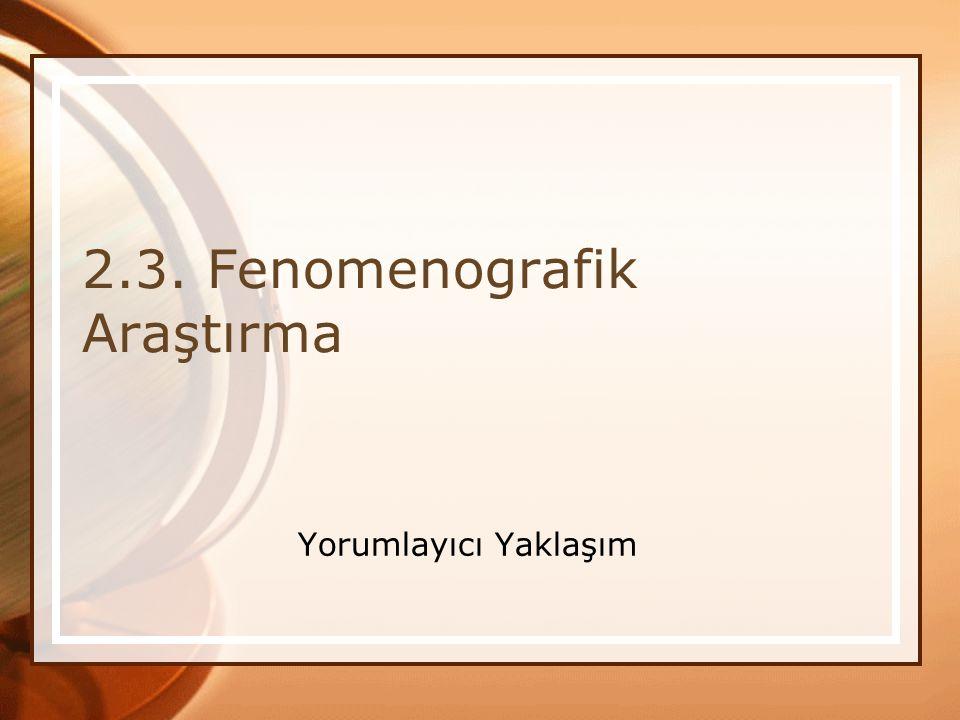 2.3. Fenomenografik Araştırma Yorumlayıcı Yaklaşım