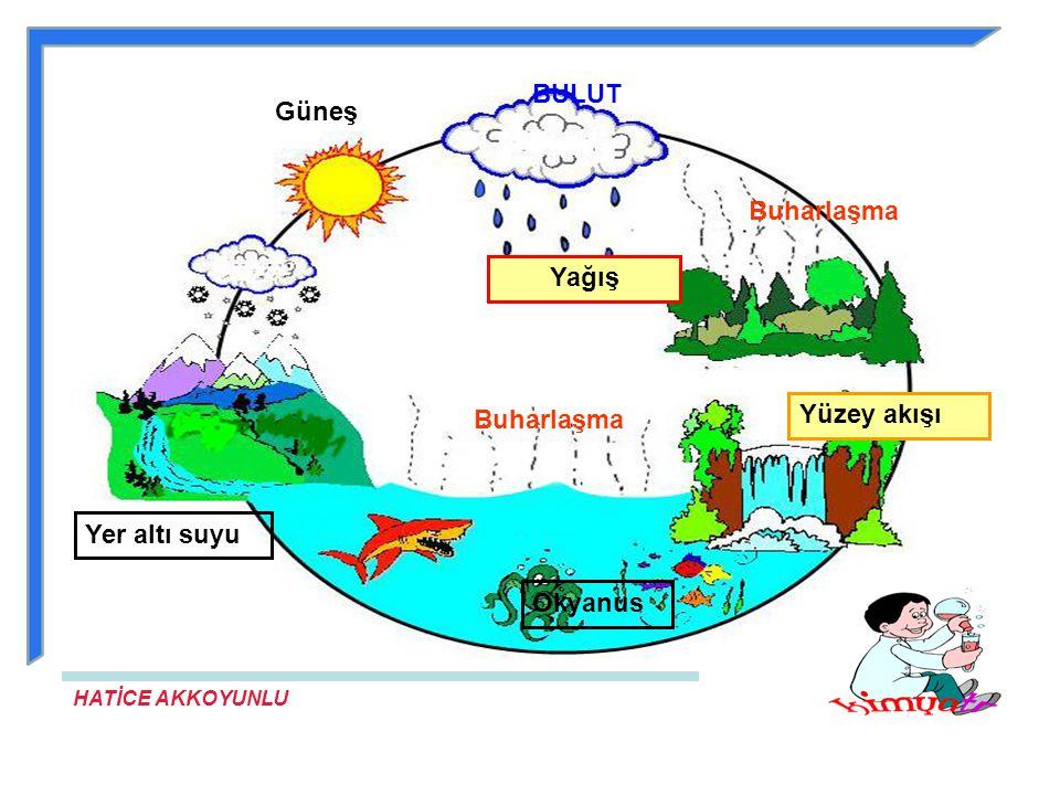 HATİCE AKKOYUNLU Doğada suyun döngüsü, yeryüzündeki suların güneş enerjisi etkisiyle buharlaşmasıyla başlar.Su buharının yükseklerdeki soğuk havanın e