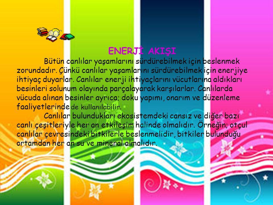 ENERJİ AKIŞI Bütün canlılar yaşamlarını sürdürebilmek için beslenmek zorundadır. Çünkü canlılar yaşamlarını sürdürebilmek için enerjiye ihtiyaç duyarl