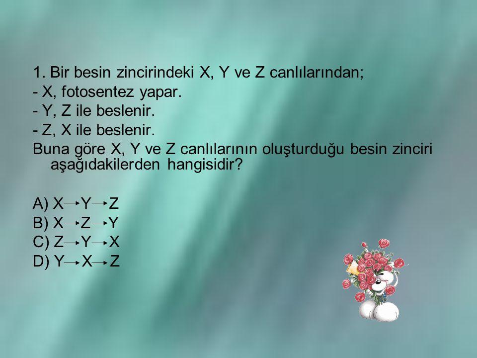 1. Bir besin zincirindeki X, Y ve Z canlılarından; - X, fotosentez yapar. - Y, Z ile beslenir. - Z, X ile beslenir. Buna göre X, Y ve Z canlılarının o