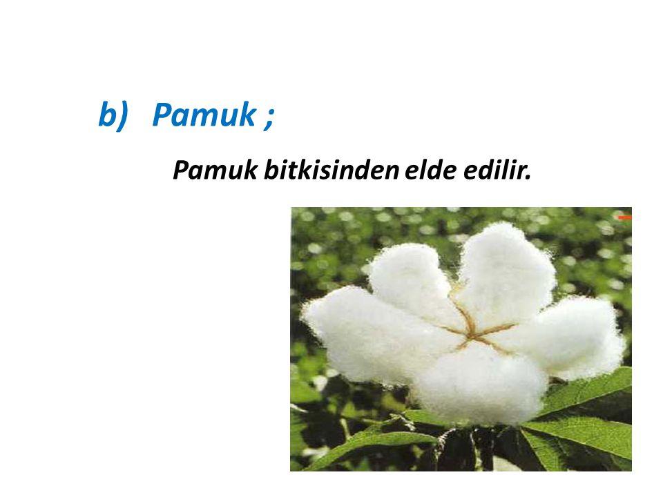 b)Pamuk ; Pamuk bitkisinden elde edilir.