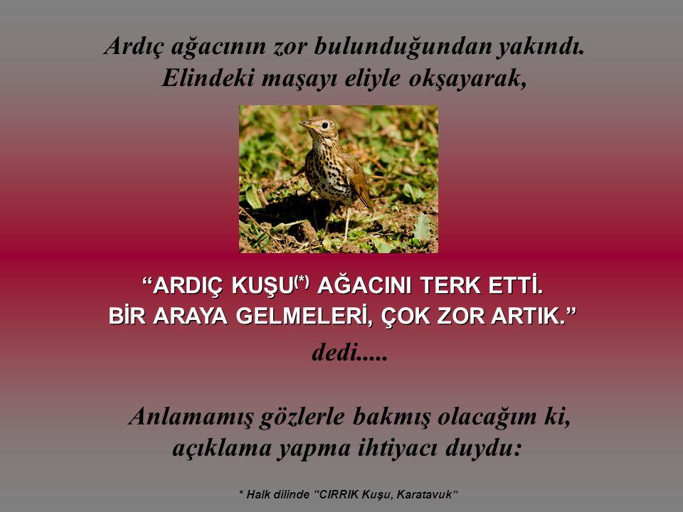 Sivas'ın Hafik ilçesinde çiftçilik yaparken sağlık sorunları nedeniyle kızının yanına Ankara'ya yerleşmiş.