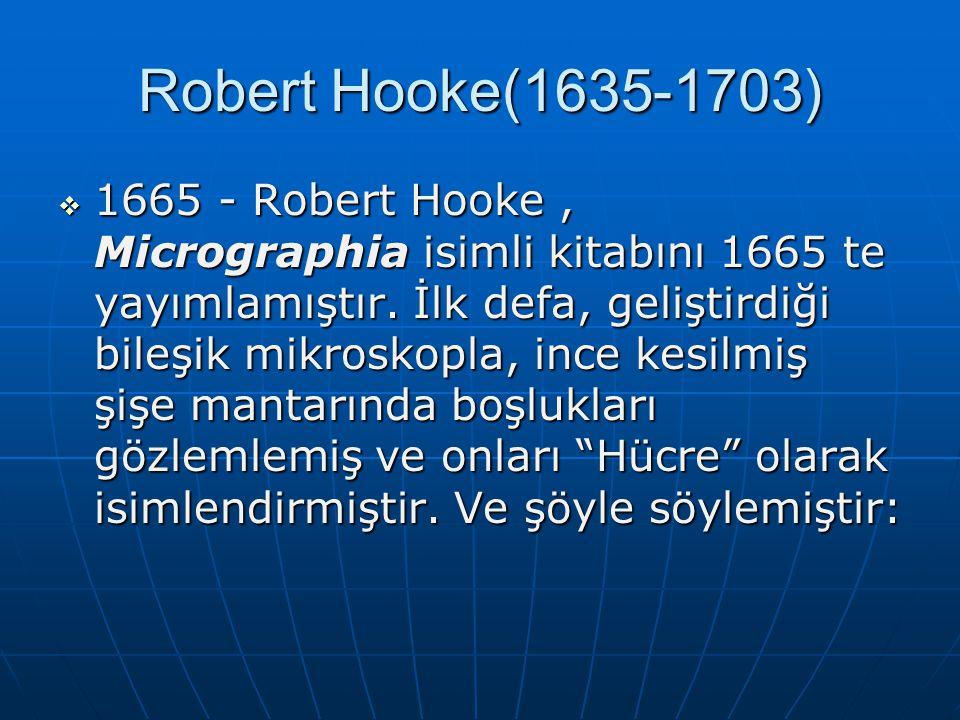 Robert Hooke(1635-1703)  1665 - Robert Hooke, Micrographia isimli kitabını 1665 te yayımlamıştır. İlk defa, geliştirdiği bileşik mikroskopla, ince ke