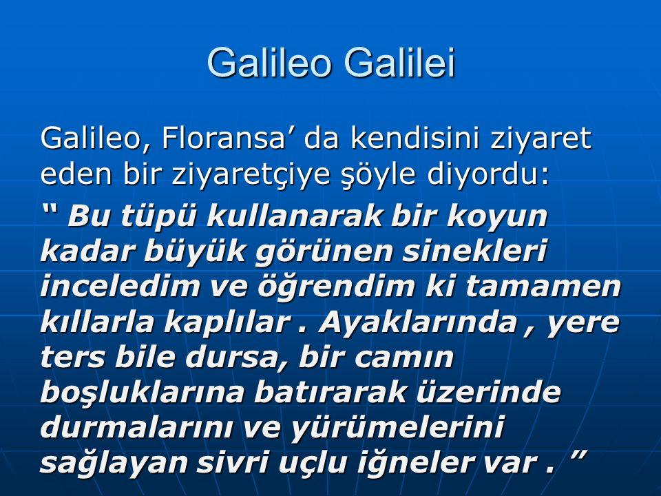 """Galileo Galilei Galileo, Floransa' da kendisini ziyaret eden bir ziyaretçiye şöyle diyordu: """" Bu tüpü kullanarak bir koyun kadar büyük görünen sinekle"""