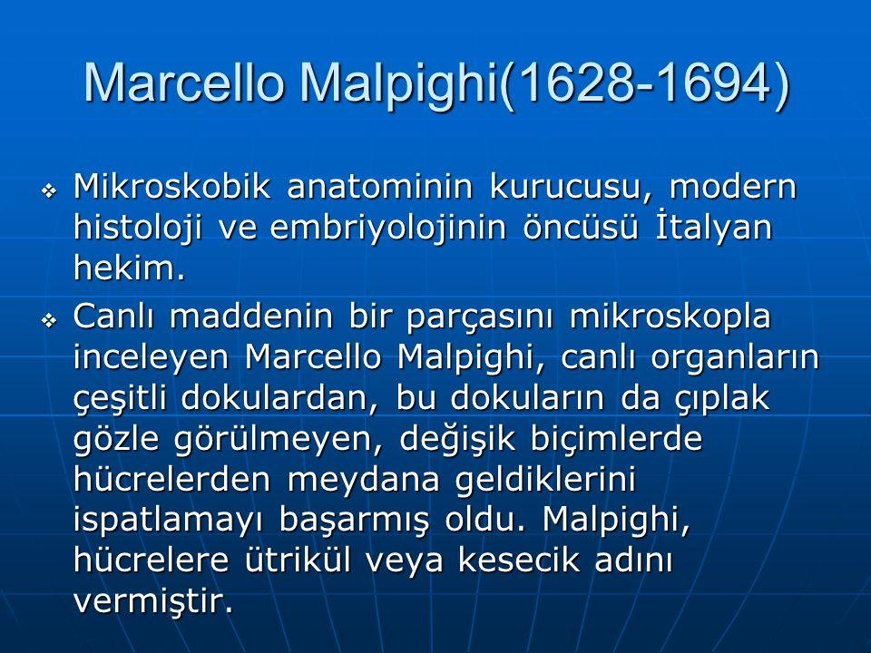Marcello Malpighi(1628-1694)  Mikroskobik anatominin kurucusu, modern histoloji ve embriyolojinin öncüsü İtalyan hekim.  Canlı maddenin bir parçasın