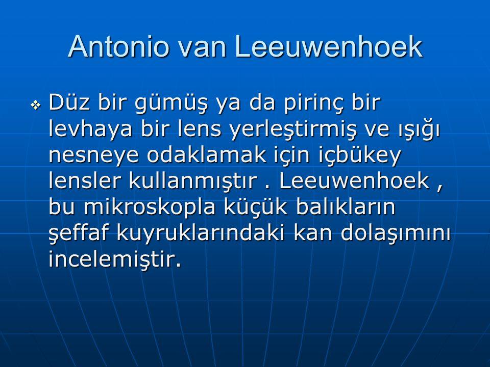 Antonio van Leeuwenhoek  Düz bir gümüş ya da pirinç bir levhaya bir lens yerleştirmiş ve ışığı nesneye odaklamak için içbükey lensler kullanmıştır.
