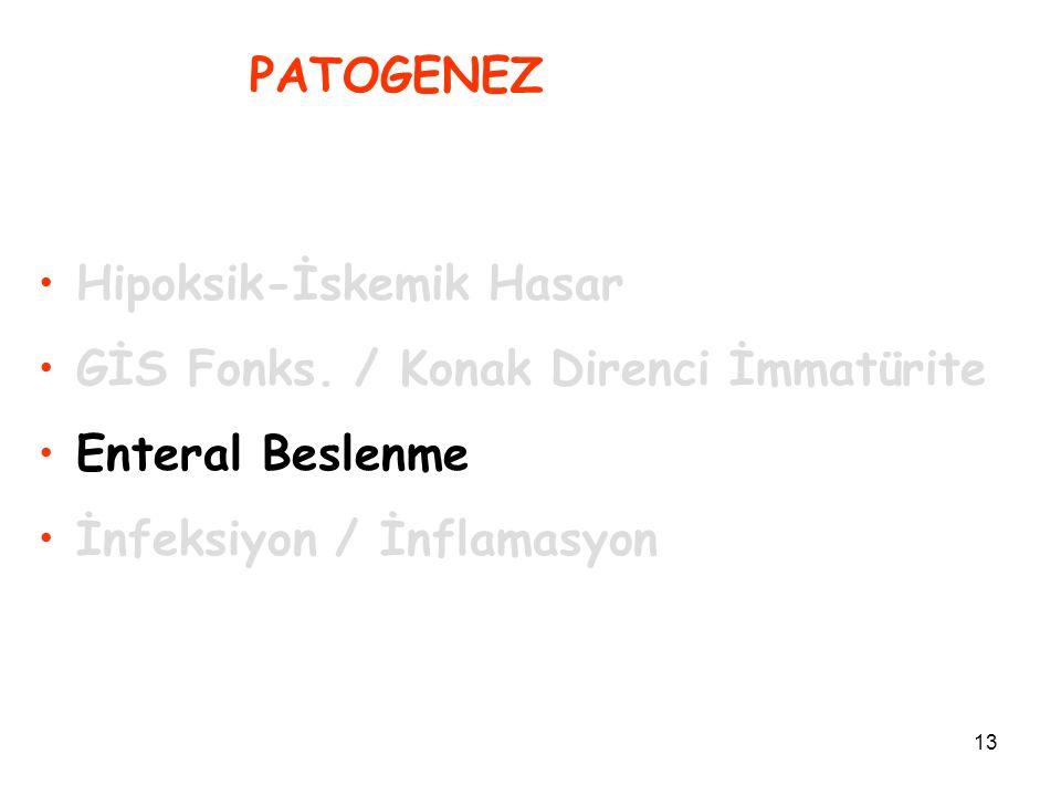 13 PATOGENEZ Hipoksik-İskemik Hasar GİS Fonks. / Konak Direnci İmmatürite Enteral Beslenme İnfeksiyon / İnflamasyon
